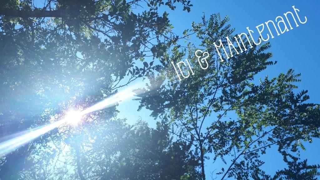 """Photo prise allongée au sol en regardant vers le ciel. Le soleil passe à travers les feuilles des arbres et crée des rayons lumineux. Il est écrit """"ici & maintenant""""."""