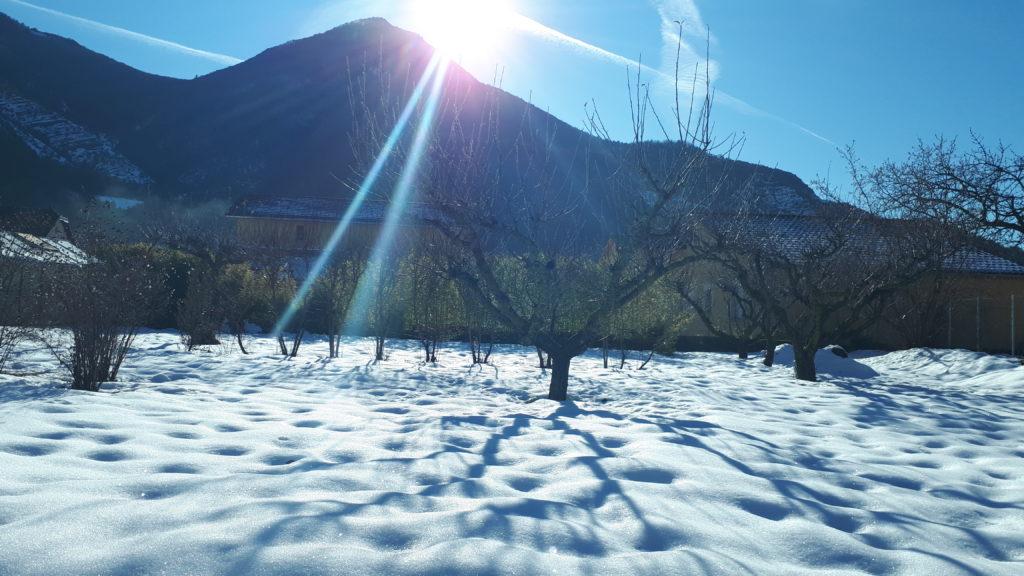 Jardin sous la neige et le soleil