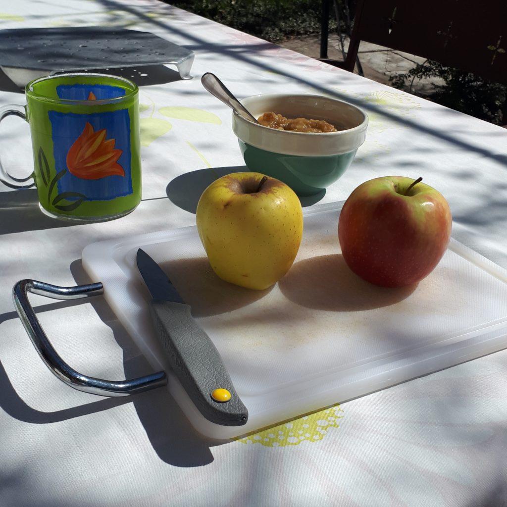 Déjeuner en terrasse en monodiète de pommes