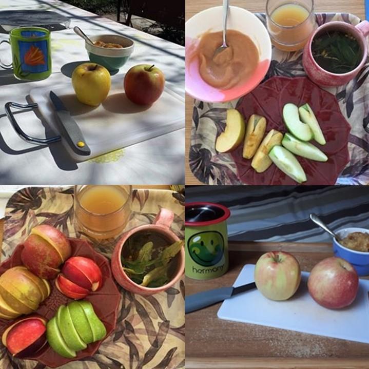 Monodiète de pommes : exemples de plateaux-repas