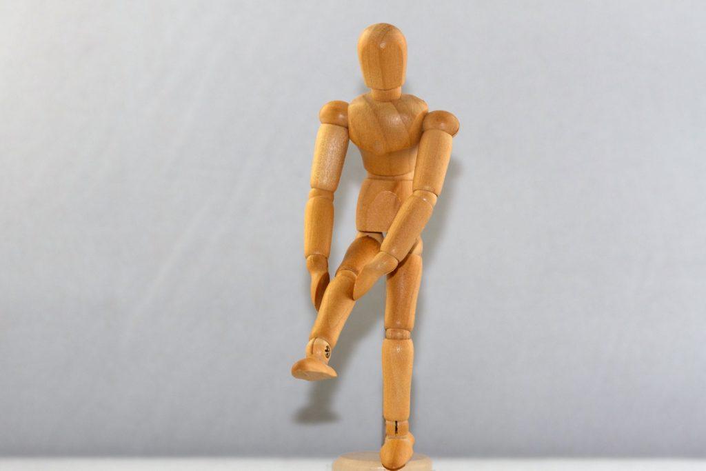 articulation des genoux